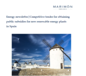 Newsletter: Competitive tender for obtaining public subsidies for new renewable energy plants in Spain